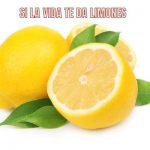 Si la vida te da limones, como lo ven los signos del zodiaco.
